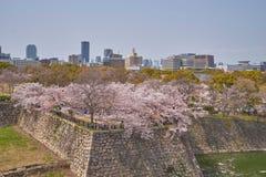 Härligt sceniskt av hjälpmedlet för suddighet för Nishinomaru trädgårdbruk för folk Arkivbilder