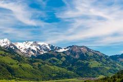 Härligt schweiziskt fjällänglandskap Schweitz Europa fotografering för bildbyråer