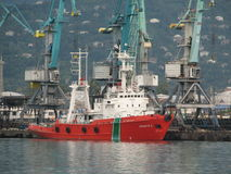 Härligt skepp på en bakgrund av blåttlyftande kranar royaltyfria bilder