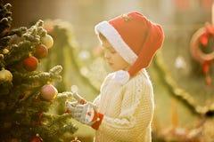 Härligt skolbarn, pojke som dekorerar julgranen på fros Arkivfoton