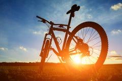 Härligt slut upp plats av cykeln på solnedgången, Royaltyfria Foton