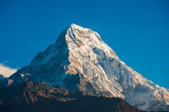 Härligt snöberg av Annapurna Himalayan område Arkivbild