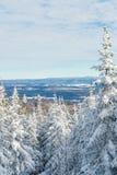 Härligt snöig landskap i Quebec, Kanada fotografering för bildbyråer
