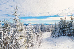 Härligt snöig landskap i Quebec, Kanada arkivfoton