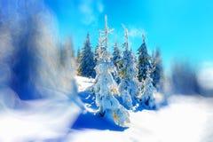 Härligt snöig landskap och suddighetseffekt effekt för 50mm bakgrundsblur aktiverar sidan för nattnikkordeltagaren Royaltyfria Bilder