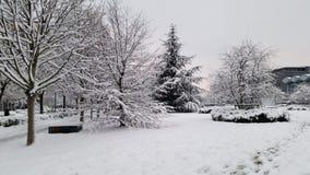 Härligt snötäcke arkivfoto