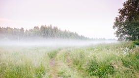 Härligt soluppgångAutumn Fall för tjock dimma landskap över fältwi royaltyfria bilder