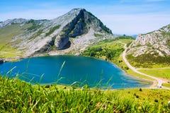 Härligt sommarberglandskap med sjön Arkivfoto
