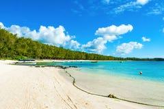 Härligt sommarlandskap av den tropiska kusten Royaltyfri Foto
