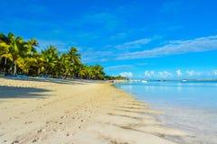 Härligt sommarlandskap av den tropiska kusten Royaltyfria Bilder
