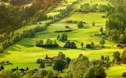Härligt sommarlandskap i fjällängbergen, Tirol Royaltyfri Bild