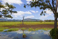 Härligt Sri Lanka landskap med sjön och berg Arkivfoton