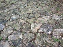 Härligt stena vägen med gräs arkivbilder