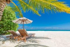 Härligt strandbaner, två solstolar och paraply på tropiskt strandlandskap Sommarsemester och feriebegrepp royaltyfri fotografi