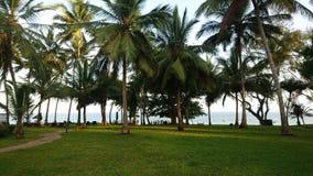 Härligt strandlandskap på kusten Mombasa Royaltyfria Foton