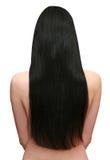 härligt svart hår Royaltyfri Foto