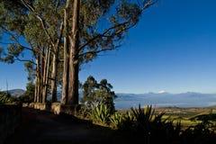 Härligt torka landskapet av de andean högländerna in Royaltyfri Foto