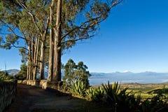 Härligt torka landskapet av de andean högländerna Arkivfoto