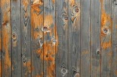 Härligt trä texturerar arkivbild