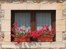 Härligt träfönster som dekoreras med röda blommor av intensiva färger royaltyfria bilder