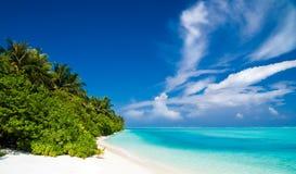 härligt tropiskt för strand Royaltyfri Bild
