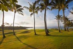 Härligt tropiskt kust- golfhål på soluppgången Royaltyfri Fotografi