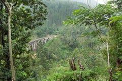 Härligt tropiskt landskap med den gamla stenbron i perspektiv, högväxt träd och frodigt på gröna kullar royaltyfria bilder