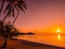 Härligt tropiskt strandhav och hav med kokosnötpalmträdet på Royaltyfri Bild