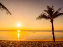 Härligt tropiskt strandhav och hav med kokosnötpalmträdet på Arkivbilder