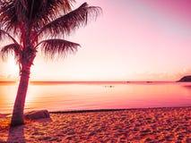 Härligt tropiskt strandhav och hav med kokosnötpalmträdet på Fotografering för Bildbyråer