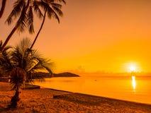 Härligt tropiskt strandhav och hav med kokosnötpalmträdet på arkivfoton