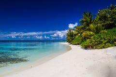 Härligt tropiskt strandlandskap i Maldiverna Arkivbild
