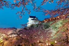 Härligt vårlandskap av en majestätisk japansk slott överst av en kulle som omges av romantiska sakura körsbärsröda blomningar Arkivfoto