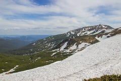 Härligt vårlandskap i Carpathians berg ukraine Royaltyfri Foto