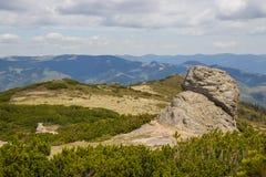 Härligt vårlandskap i Carpathians berg ukraine Royaltyfria Foton