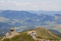 Härligt vårlandskap i Carpathians berg ukraine Arkivfoton