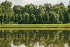 Härligt vårlandskap med tårpil- och björkträd som reflekterar i den exponerade yttersidan av vattnet och royaltyfria bilder