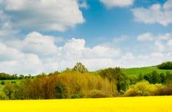 Härligt vårlandskap, Tjeckien Arkivbild