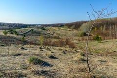 Härligt vårlandskap: träd, skog, berg, kullar, fält, ängar och blå himmel royaltyfria foton