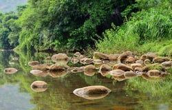 Härligt vattenlandskap med reflexion Royaltyfria Bilder