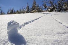 Härligt vinterjullandskap Brant bergkullelutning arkivfoton
