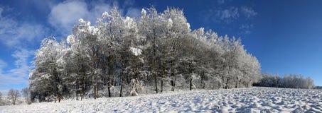 Härligt vinterlandskap Arkivfoton