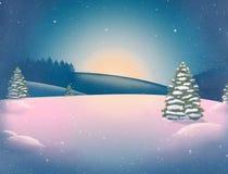Härligt vinterlandskap för nytt år med snö-täckte träd och mousserastjärnor fotografering för bildbyråer