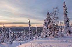 Härligt vinterlandskap från nordliga Finland Arkivbilder