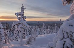 Härligt vinterlandskap från nordliga Finland Arkivfoto