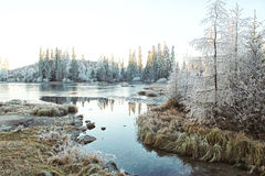 Härligt vinterlandskap höga Tatras Arkivbild