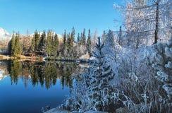 Härligt vinterlandskap höga Tatras, Strbske royaltyfri foto