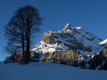 Härligt vinterlandskap i Braunwald royaltyfri foto