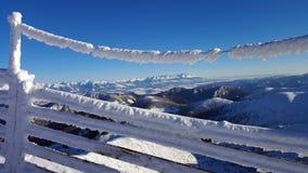 Härligt vinterlandskap i Carpathians Arkivfoton
