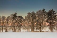 Härligt vinterlandskap i Lapland, Finland Arkivfoton